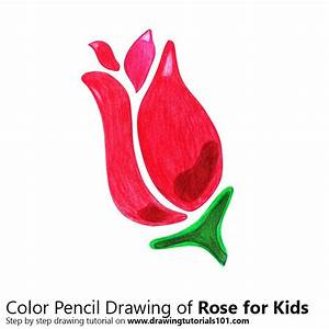 Rose for Kids Colored Pencils - Drawing Rose for Kids with ...
