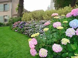 Home And Garden Landscape Ideas Photograph