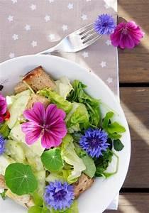 Unkraut Mit Essig Vernichten : ist das unkraut oder kann man 39 s essen lecker und gesund kraut kapuzinerkresse und salat ~ Frokenaadalensverden.com Haus und Dekorationen