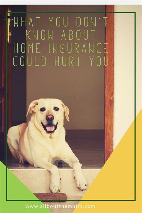 Njm advertisements and marketing materials that refer to a potential savings of 20% apply to nj, pa, ct, and oh personal auto policies. Home Insurance Breed Restrictions You Need to Know Now! It May Affect You and Your Mixed Breed ...