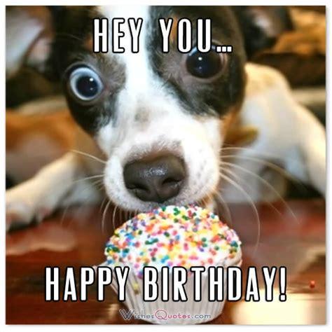 funny birthday wishes  friends  ideas  maximum