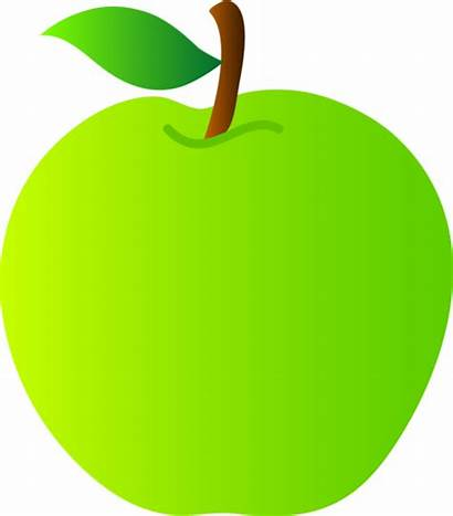 Apple Clipart Apples Clip Drawing Fruit Granny