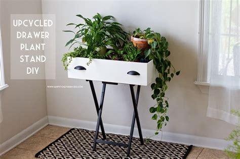 Best 25+ Indoor Plant Stands Ideas On Pinterest