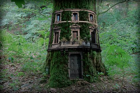 cool tree houses  awesome