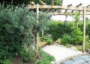 Mediterrane Pflanzen Winterhart : olivenbaum pflege und tipps zur gartengestaltung ~ Frokenaadalensverden.com Haus und Dekorationen