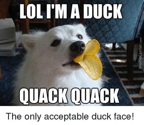 Duck Hunting Meme - duck face hunting meme