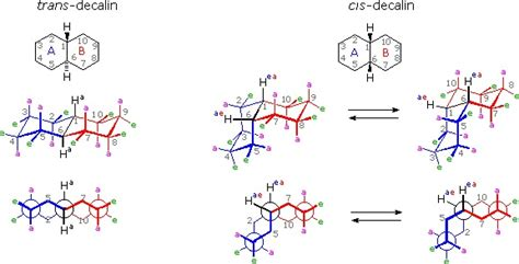 conformation chaise steroids chemistry libretexts