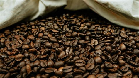 Get the coffee bean icon and 1717 other icons in line icon style and a myriad of other style and color combinations. Download wallpaper 2048x1152 coffee beans, coffee, beans, macro, brown ultrawide monitor hd ...