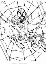 Spiderman Coloring Pages Printable Sheets Lego sketch template