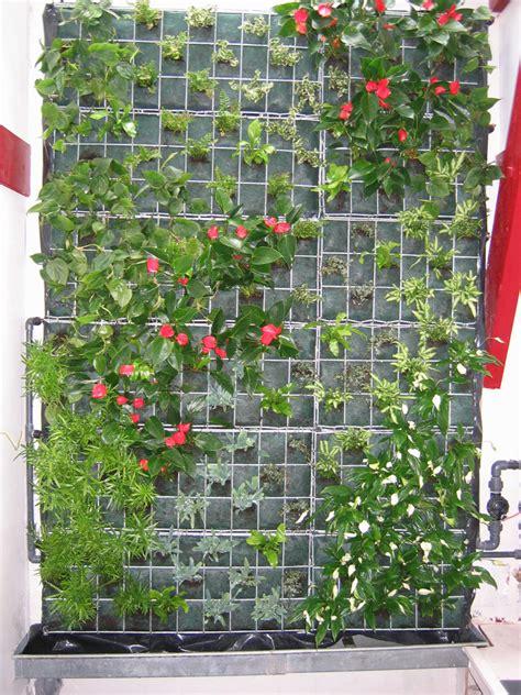 construire mur vegetal exterieur homesus net