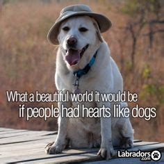 1000+ Images About Love Of Dogs On Pinterest  Love Us. Bible Quotes Rain. Travel Quotes Hashtags. Independence Day Quotes Russel Casse. Harry Potter Quotes Umbridge. Birthday Quotes Vonnegut. Inspirational Quotes Death. Instagram Quotes Dp. Cute Valentine Quotes For Your Crush