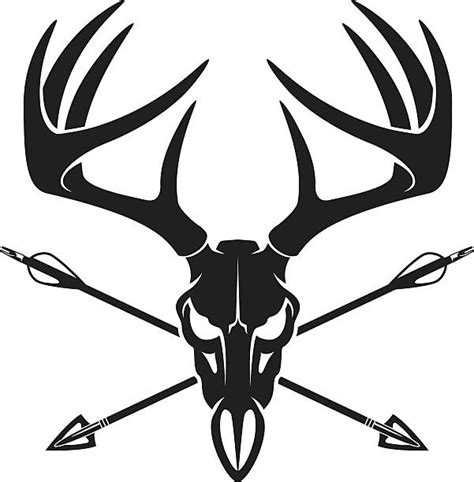 Best Bow Hunting Illustrations Royalty Free Vector