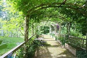 Pergola Mit Wein Bepflanzen : free images path flower jungle backyard botany leafy botanical garden estate arbor ~ Eleganceandgraceweddings.com Haus und Dekorationen
