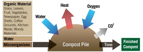 Crop Talk: 6 Steps to a Thriving Compost Pile ? Farm to
