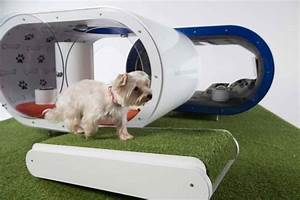 samsung introduces smart home for dogs treehugger With smart dog house
