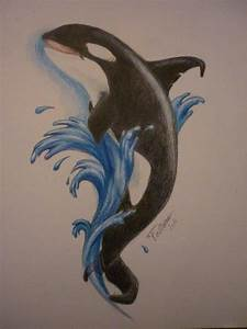 Orca Drawing Color Pencil Drawings Pinterest Orcas And ...