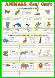 cancant animals fully editable    reading