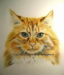 Steine Bemalen Katze : zeichnen ~ Watch28wear.com Haus und Dekorationen