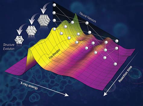 bnl large synoptic survey telescope lsst contact karen mcnulty walsh