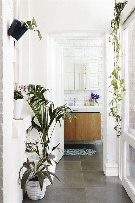 des plantes vertes dans la salle de bain frenchy fancy