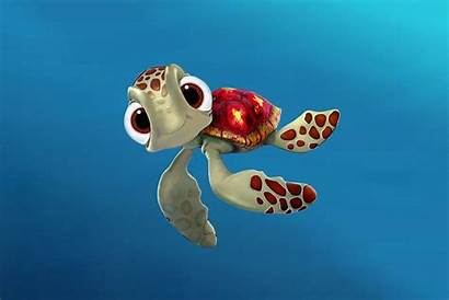 Turtle Turtles Wallpapers Sea Squirt Nemo Finding