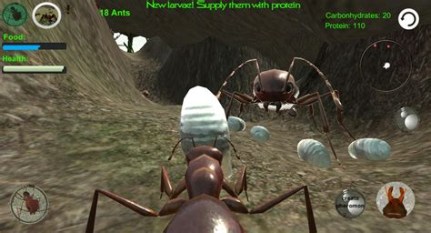 ant simulation  insect survival game apk