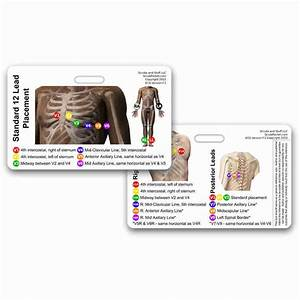 Ekg 12 Lead Placement Horz Reference Badge Card Paramedic