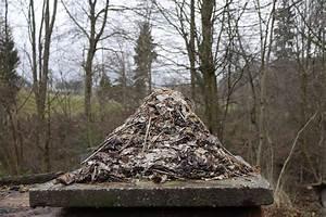 Rasenpflege Nach Dem Winter : pyramiden heinz schmid ~ Orissabook.com Haus und Dekorationen