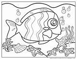 Trigger Fish Coloring sketch template