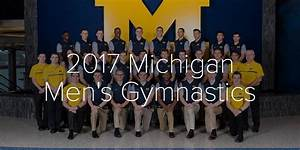 2017 Michigan Men's Gymnastics