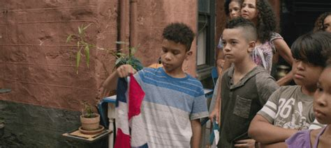 Raised garden is finally finished! GIF by In The Heights Movie - Find & Share on GIPHY