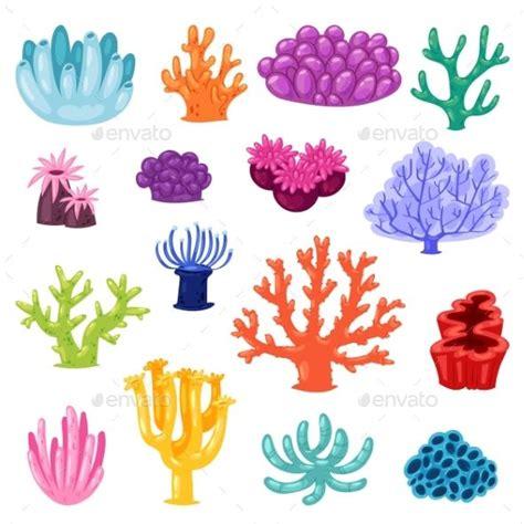 coral vectors coral vectors  object nature