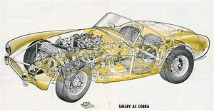 The First Shelby Cobra