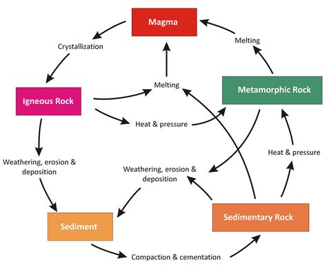 Diagram Of Rock by Types Of Rocks And Rock Cycle Easy Ias