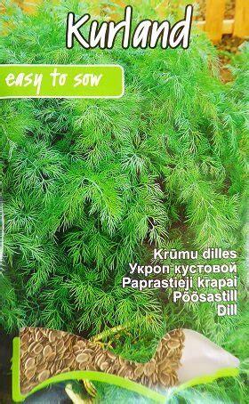 Dilles krūmu Kurland 5 g Kurzemes sēklas - Dilles - Sēklu ...