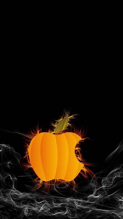 Halloween Phone Iphone Cat Funny Spooky Wallpapers