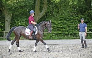 Spencer Wilton: How to improve your dressage marks [VIDEO ...