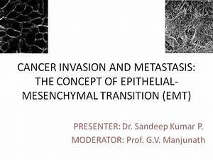 Cancer Invasion And Metastasis