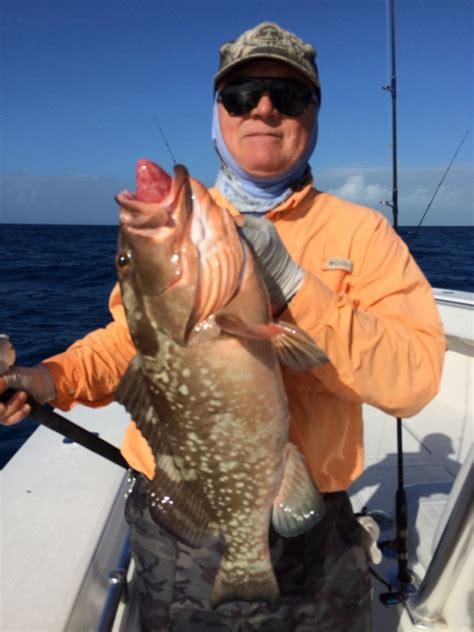 grouper catches weekly keys florida fishing delphfishing
