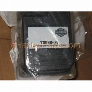 Cruise Control Module  2004-2007 Touring Models