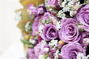 Bouquet Pas Cher : beau bouquet de fleurs pas cher closion ~ Melissatoandfro.com Idées de Décoration