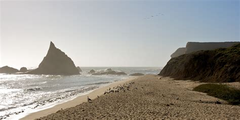 surfers win  californias martins beach