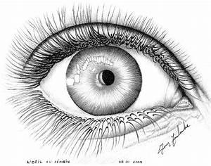 Dessin De Plume Facile : dessin l 39 oeil ~ Melissatoandfro.com Idées de Décoration
