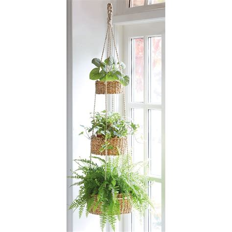 tier hanging basket natural collection select