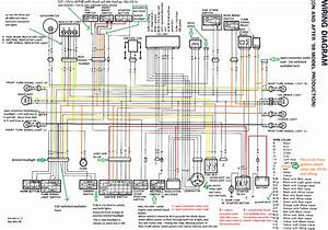 Color  Annotated Wiring Diagram 98 And Up