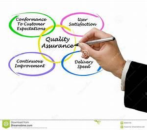 Quality Assurance Stock Photo  Image Of Diagram  Writing