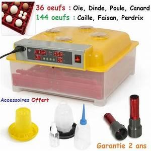 Couveuse Oeuf De Poule : couveuse automatique incubateur mire oeufs ~ Premium-room.com Idées de Décoration