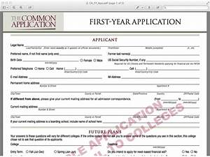 sample college applications template business With college application template