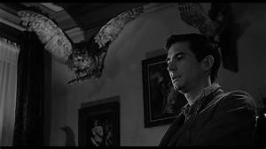 What Do Birds Symbolize in Alfred Hitchcock's 'Psycho'?  Psycho