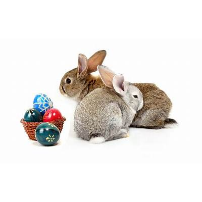 Free Download Easter 2013 HD Wallpapers for Android